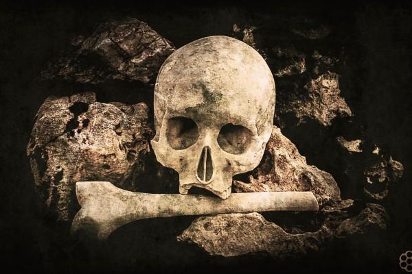 Vita Et Morte